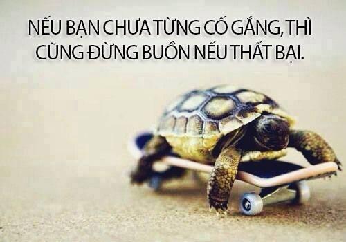 chua-co-gang-dung-nghi-that-bai-1dc3a